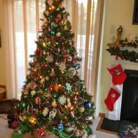A Southern Christmas Tree