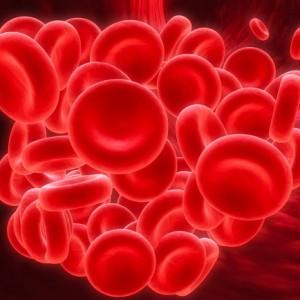 Blod clot 32 shutterstock_3010784 - Version 2